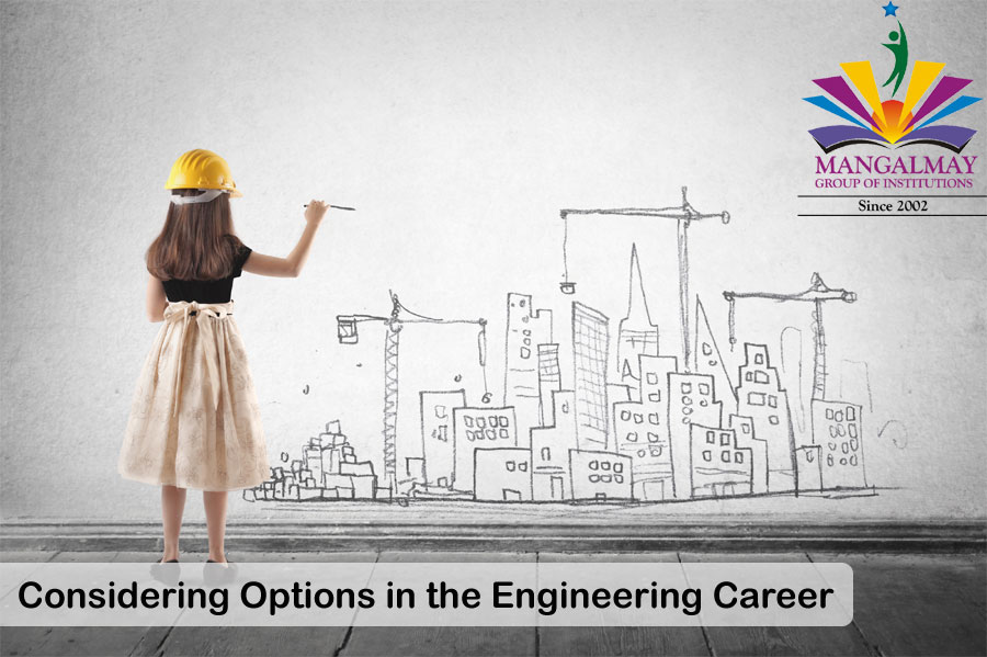 Considering Options in the Engineering Career