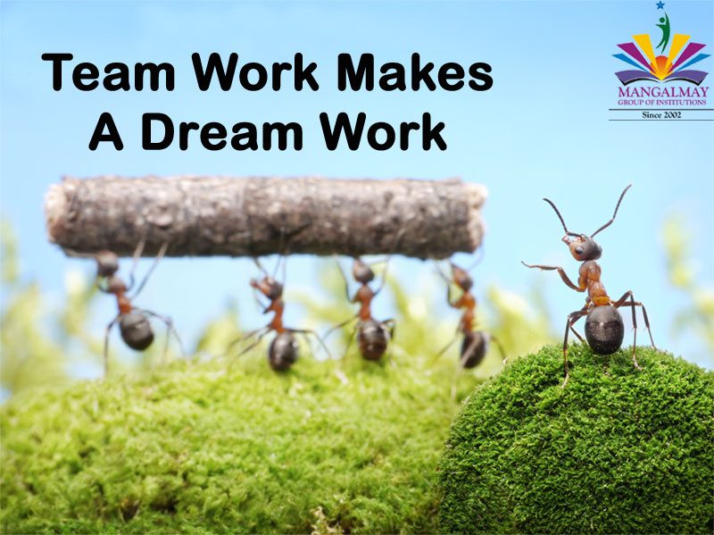 Team Work Makes a Dream Work